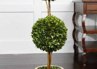 potted greenery1